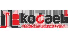 Kocaeli Platform Forklift
